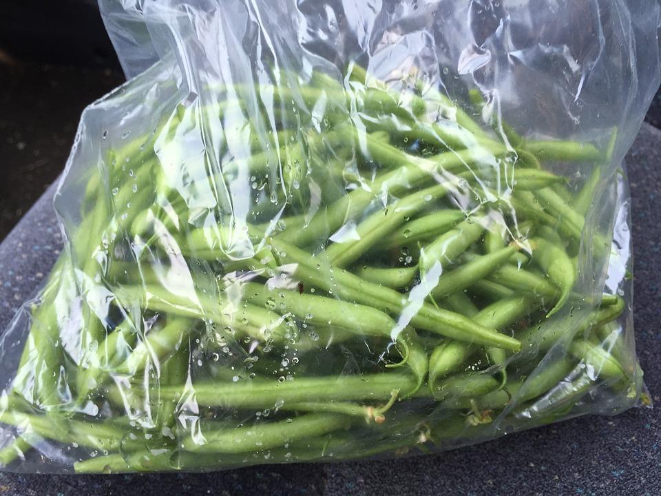 green-beans-1377124_960_720