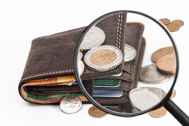 zvětšená peněženka.jpg